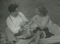 Пикник, который не обошёлся без секса